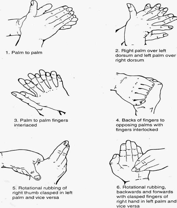 6 3 describe the correct sequence for hand washing Hand washing is the number one way to prevent infectionwhile sanitizing hand lotions have become increasingly popular, studies show that a good hand washing with soap and water is still more effective if you have visibly soiled hands hand washing can even prevent you from catching the common cold.